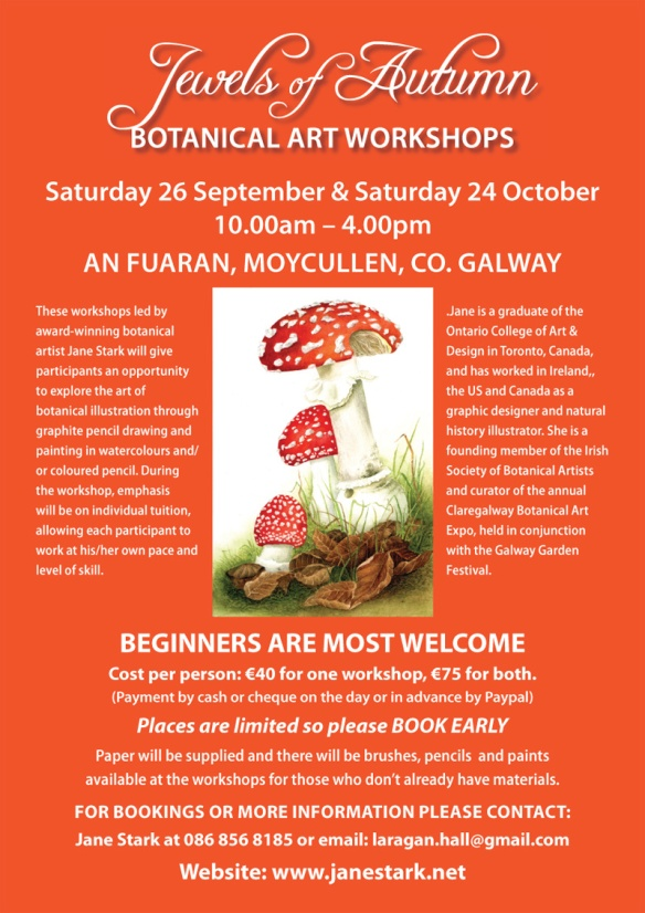 Botanical Art Workshops Autumn 2015