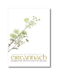 The front cover of Éireannach: Native Plants of Ireland