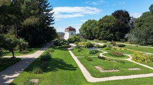 Vienna Botanic Garden (Wiki Commons)